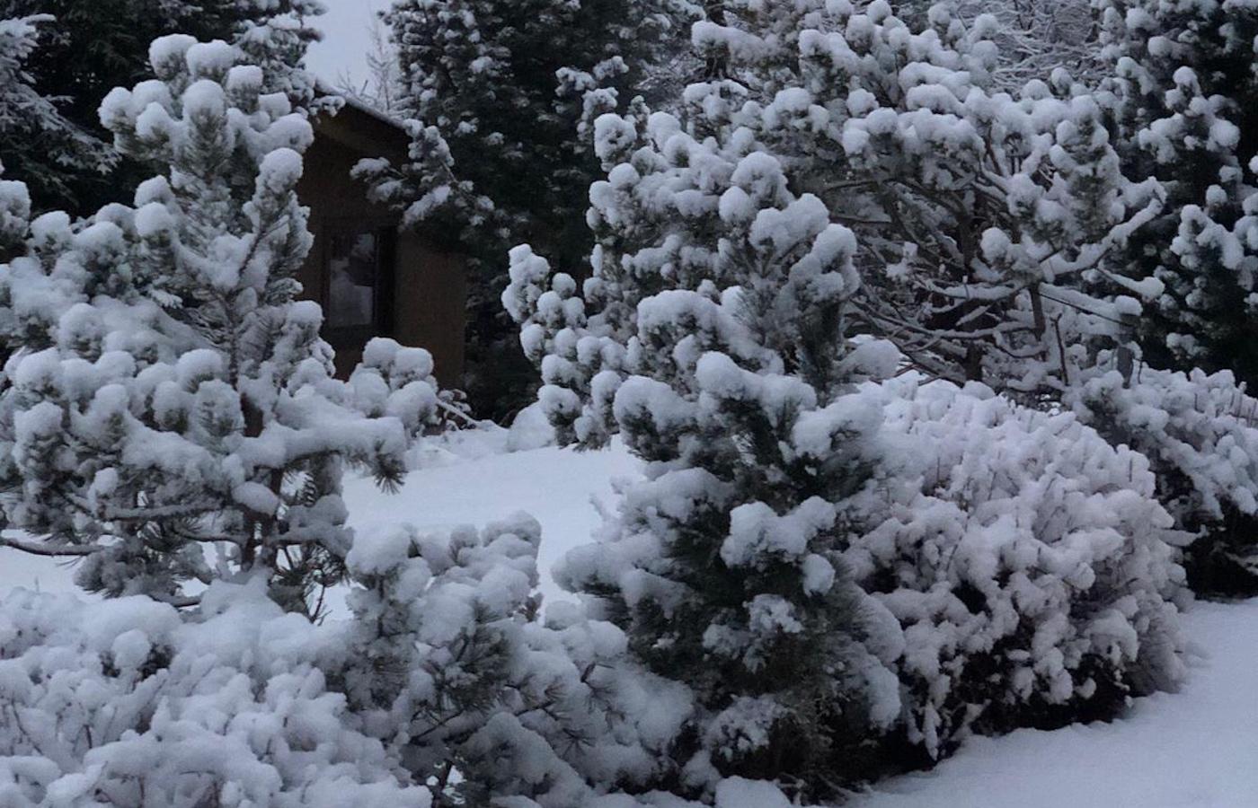 Erste Ladung Schnee